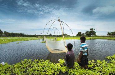 Assam Rural