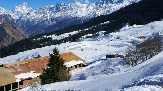 Auli Winter