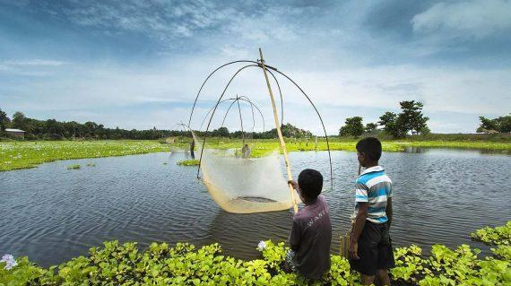 Assam fishing