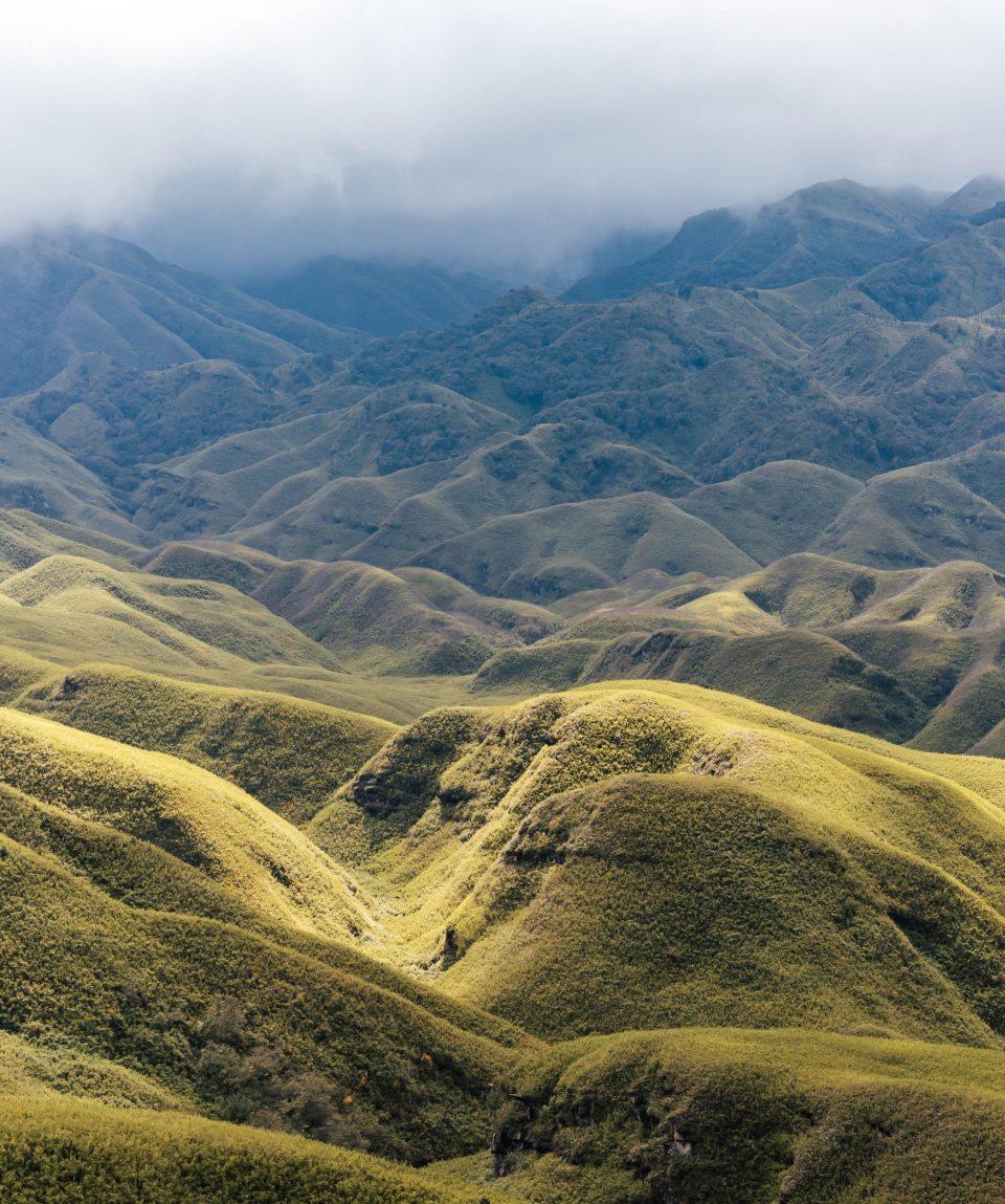 Dzouku Valley