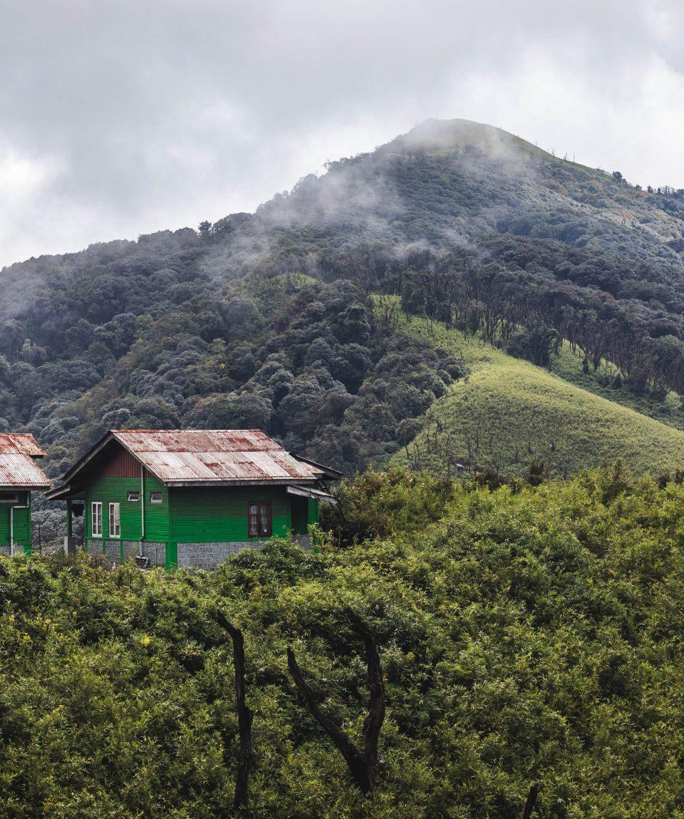 Hills near Kohima