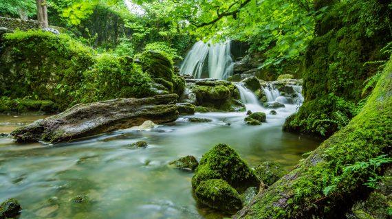 Nagaland Waterfall